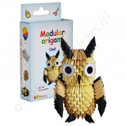 Origami 3D Kit Uil